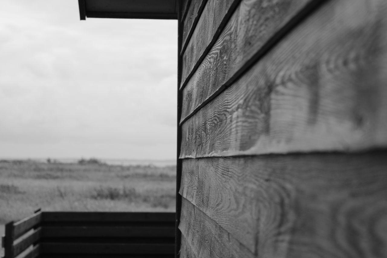 Danmark dänemark No People Dänemark Nature Outdoors Ostsee Wood - Material blackandwhite
