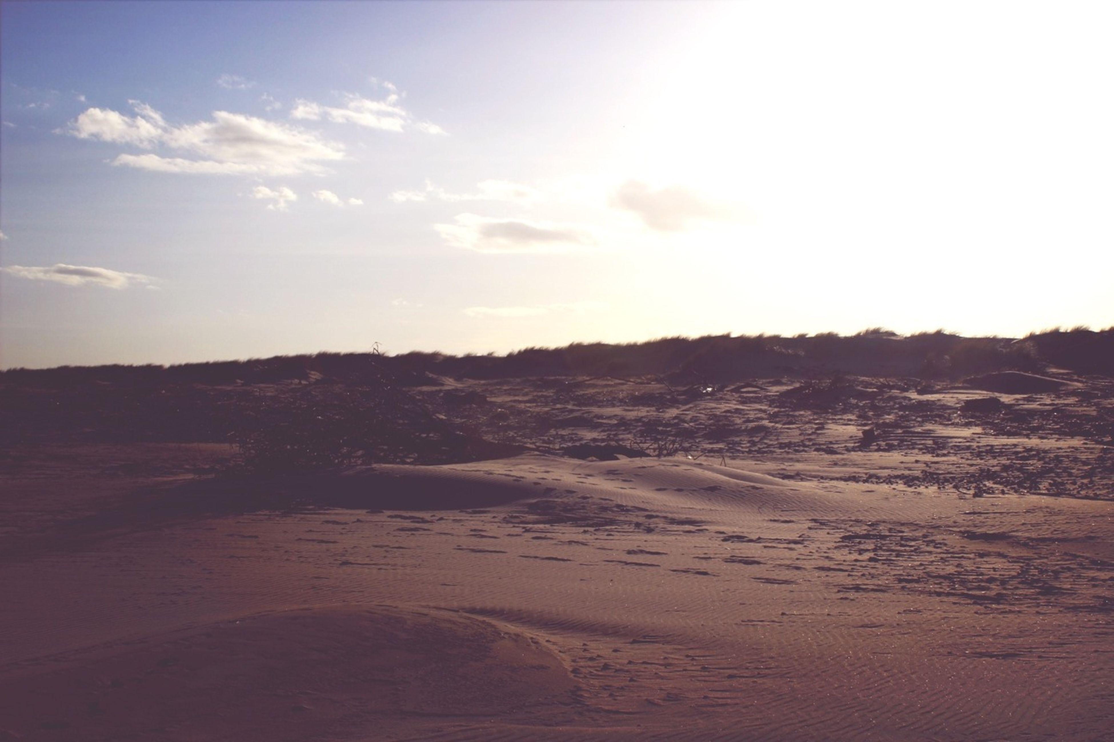 tranquil scene, tranquility, landscape, scenics, sky, desert, nature, beauty in nature, sand, arid climate, non-urban scene, remote, barren, sunlight, horizon over land, idyllic, outdoors, sunset, sand dune, cloud - sky