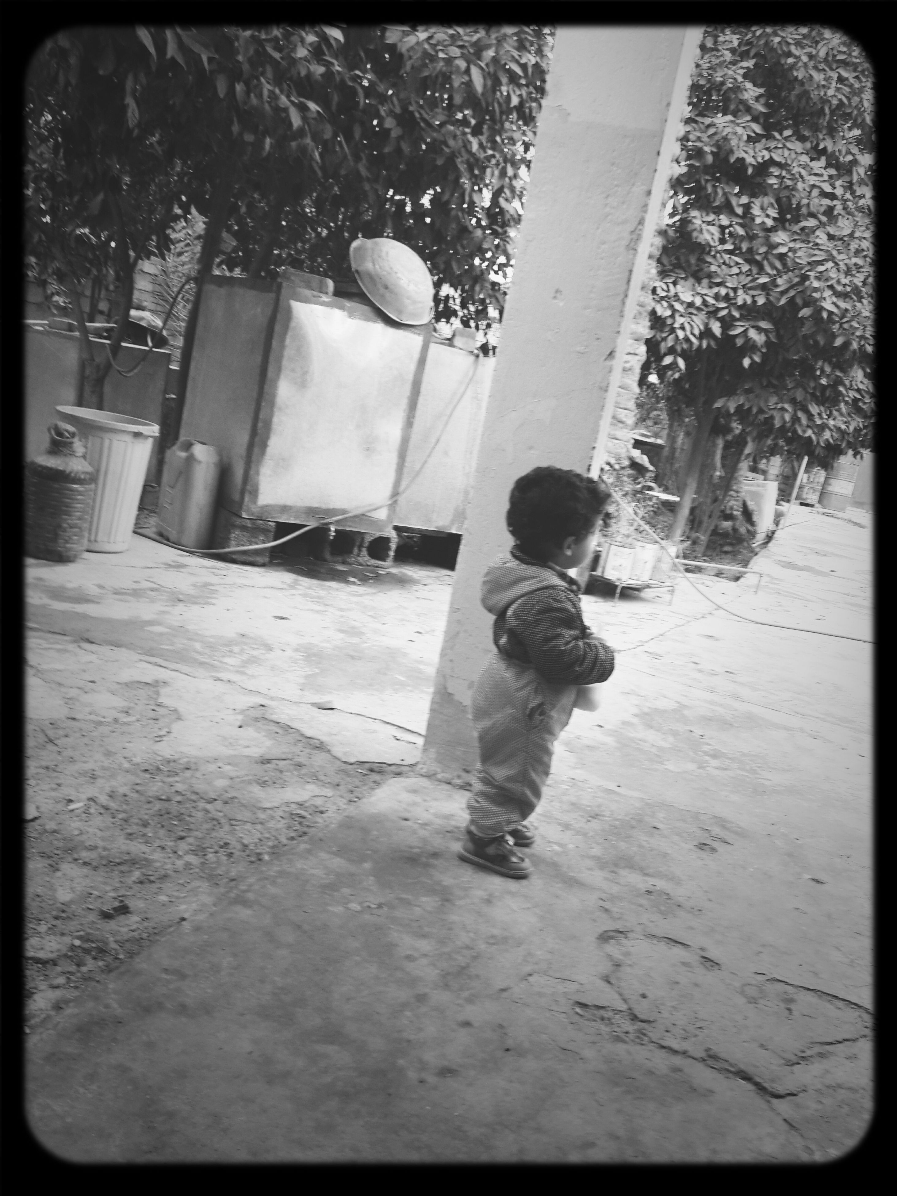transfer print, childhood, lifestyles, full length, auto post production filter, leisure activity, elementary age, girls, boys, casual clothing, tree, built structure, day, building exterior, street, rear view, standing, park - man made space