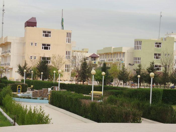 Today's Hot Look Erbil Popular Photos At University Photography Erbil Cihan University Good Morning At Work