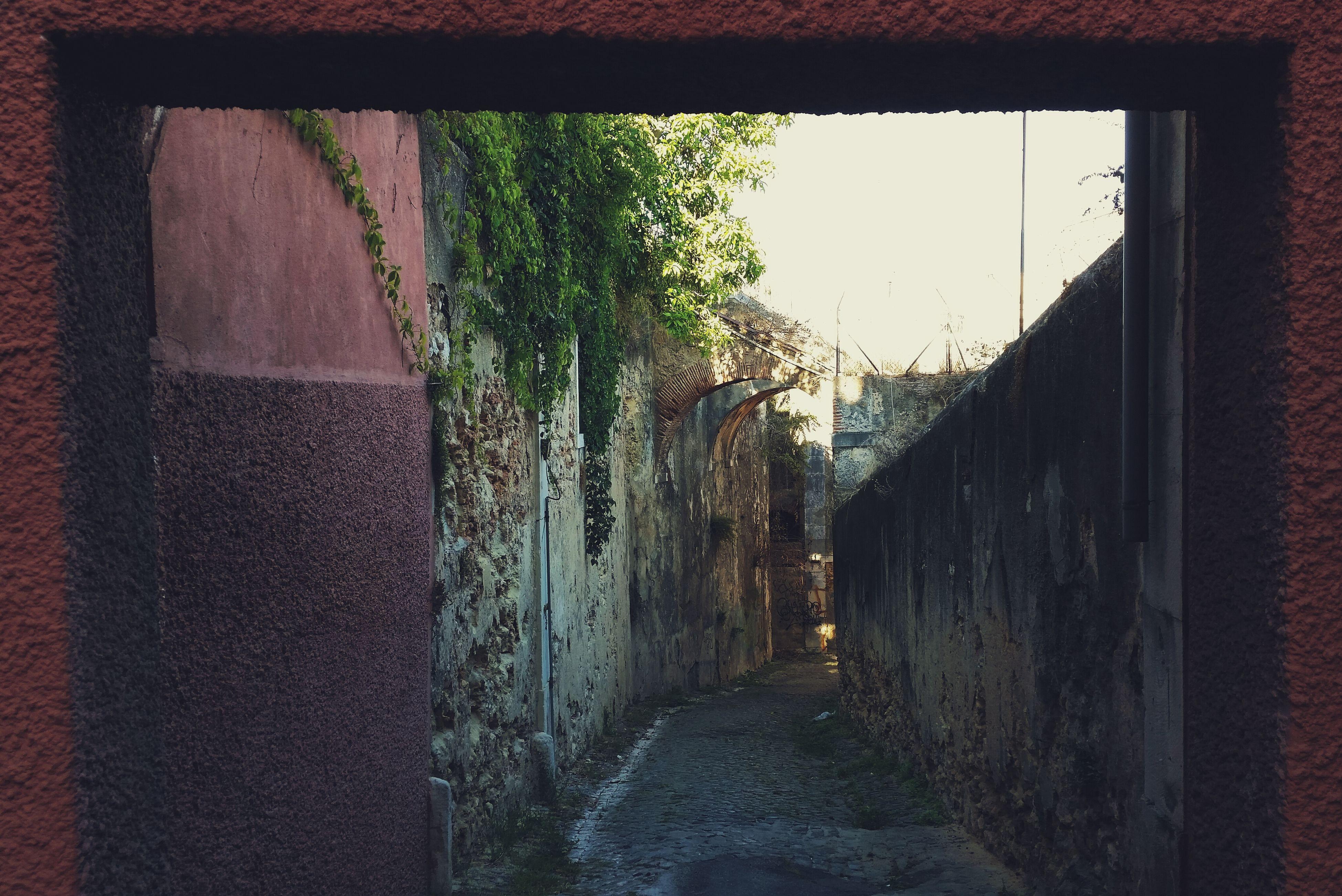 Street Photography Ruins Urban Nature Lisbon