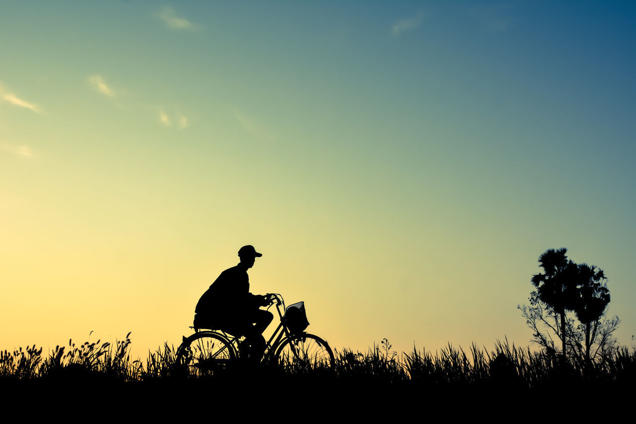silhouette, sunset, real people, one person, tree, sky, nature, field, men, wheelchair, transportation, outdoors, sunlight, bicycle, lifestyles, beauty in nature, scenics, growth, clear sky, mammal, day, people