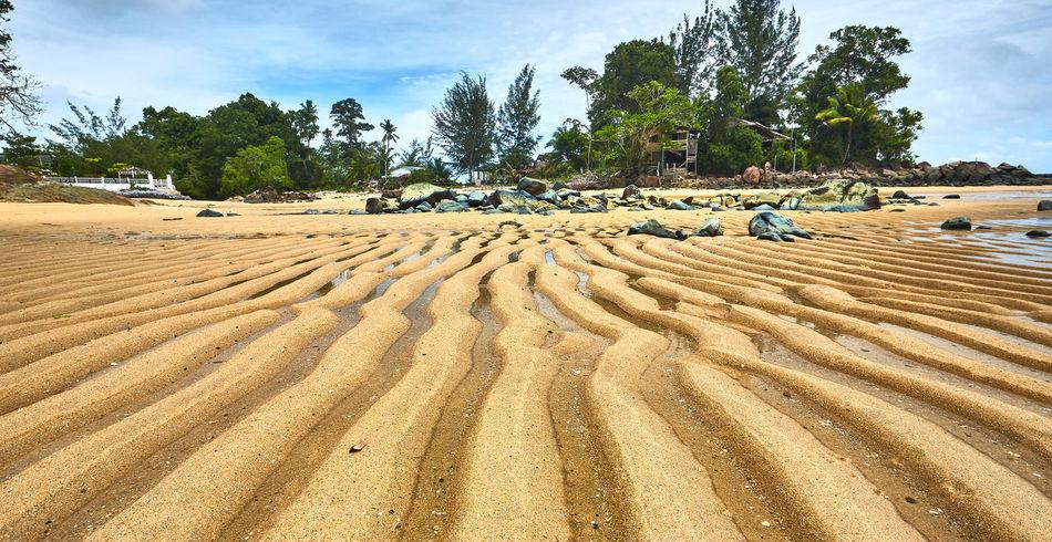 Beach sand patterns Beach Sand Patterns Landscape No People Outdoors Pattern Sand Sand Dune Sand Patterns