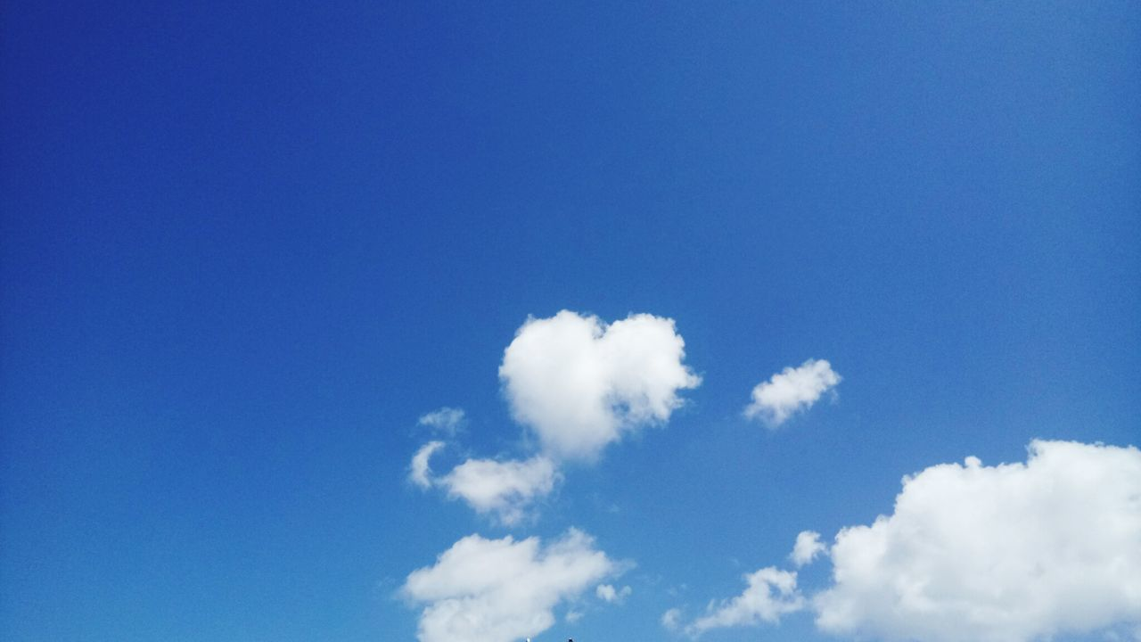 Love is in the Sky Blue Cloud - Sky Sky Nature Day Softness Heaven Flying No People Backgrounds Beauty Outdoors Wind Beauty In Nature Sky Only SFOSky Californiadiaries EyeEmNewHere