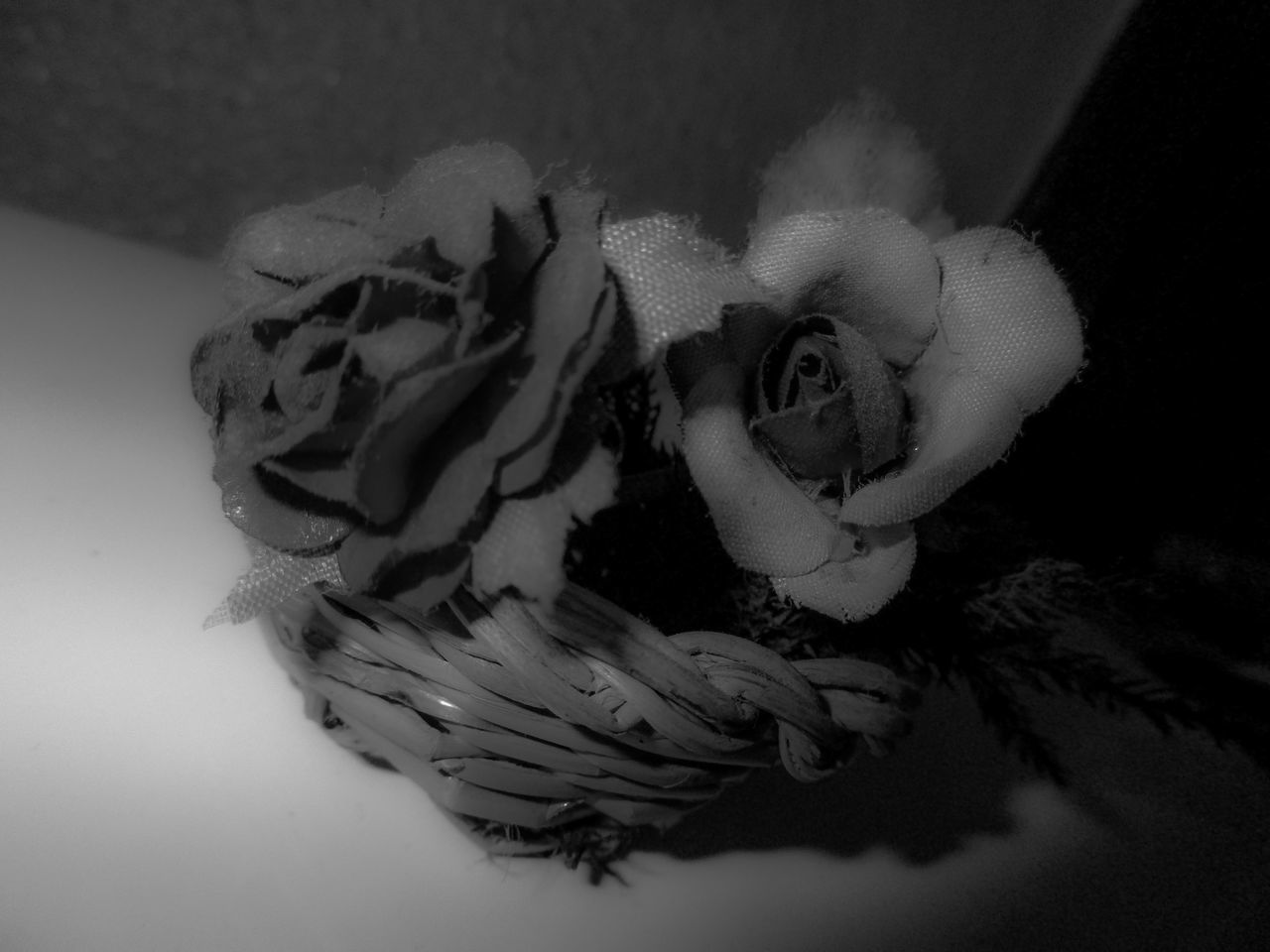 Biancoenero Blackandwhite Blur Canon Cestino Close-up Cotton Plant Creative Fiori Flower Basket Flowers Indoors  Lights And Shadows Nature Ninofogliani58 No People Photolab Sfocatura