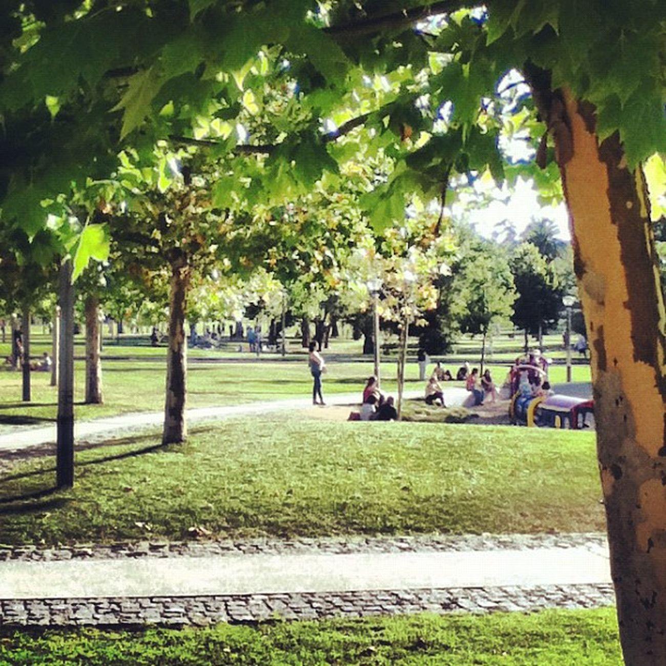 Uma tarde no Parque