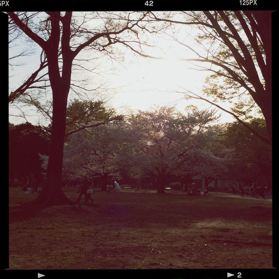 硯公園 First Eyeem Photo