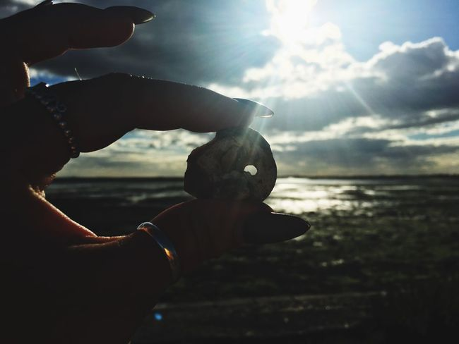 Human Hand Human Body Part Sun Holding Water One Animal Sunlight Sky Sea Real People Lens Flare One Person Nature Bird Outdoors Animals In The Wild Leisure Activity Sunset Close-up