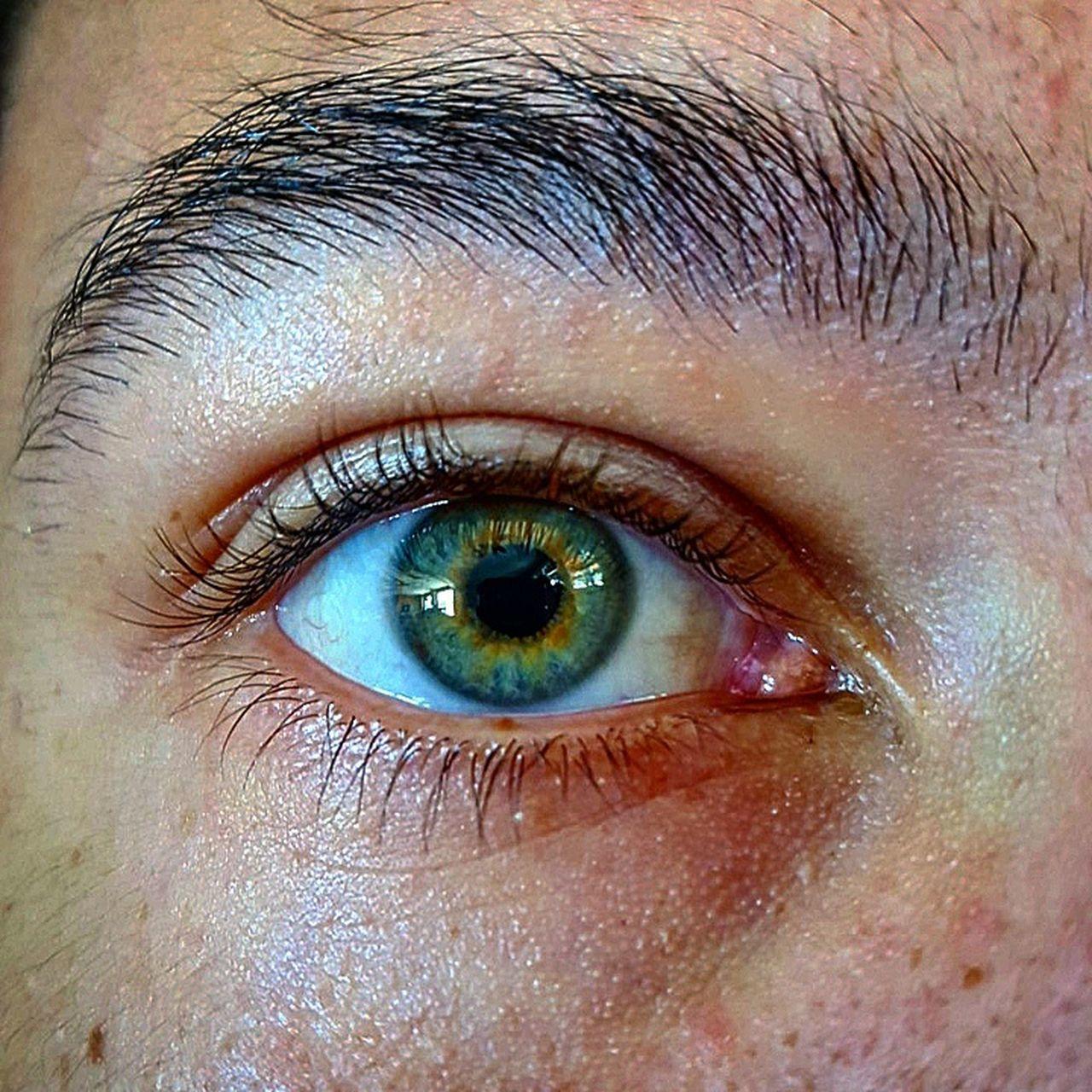 human eye, human body part, eyelash, looking at camera, eyesight, blue eyes, eyeball, one person, eyebrow, iris - eye, close-up, sensory perception, portrait, human skin, real people, adult, people, adults only, one woman only, hazel eyes, outdoors, day