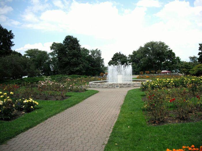 Rosegarden Strollthroughthegarden Circular Fountain Gardens Brickpath Rosebushes Trees Well-kept