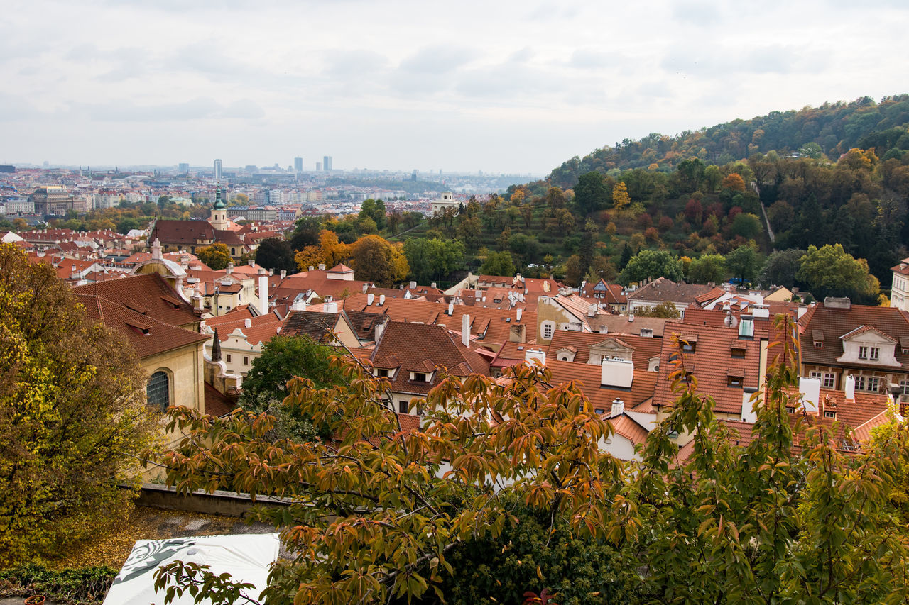 Prague in autumn. Architecture Building Exterior Built Structure City Outdoors Roof Sky Tree