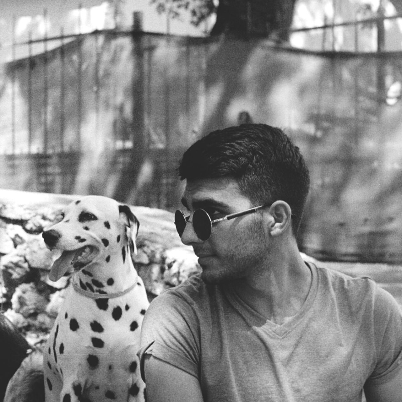 dog, animal themes, pets, one animal, domestic animals, mammal, dalmatian dog, real people, one person, day, focus on foreground, leisure activity, casual clothing, outdoors, lifestyles, sitting, young adult, close-up, nature, people