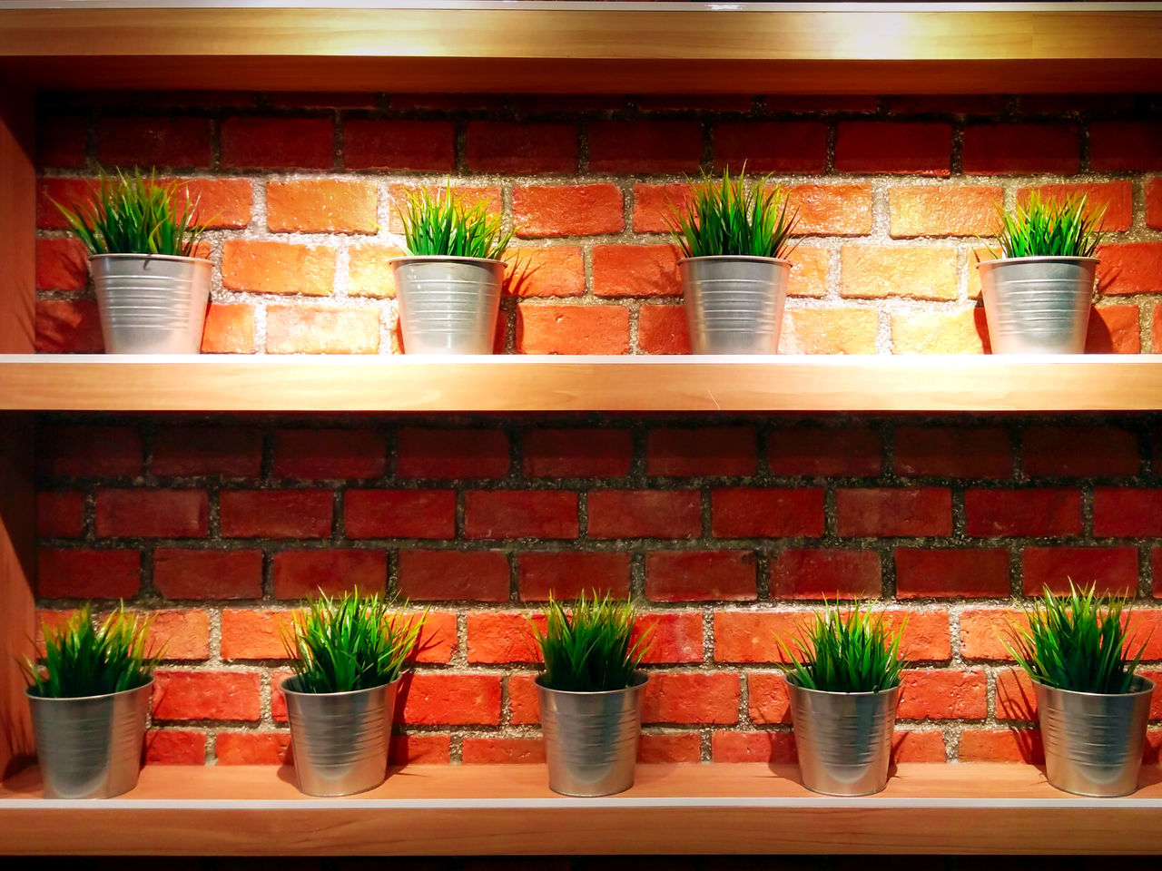 Pots of Fresh Grass Lined against a Brick Wall Arrangement Choice Contrasting Colors Day De Design Exit Sign Food Freshness Indoors  Interior Design No People Plant Potted Plant Refreshment Shelf Store Variation Window Box