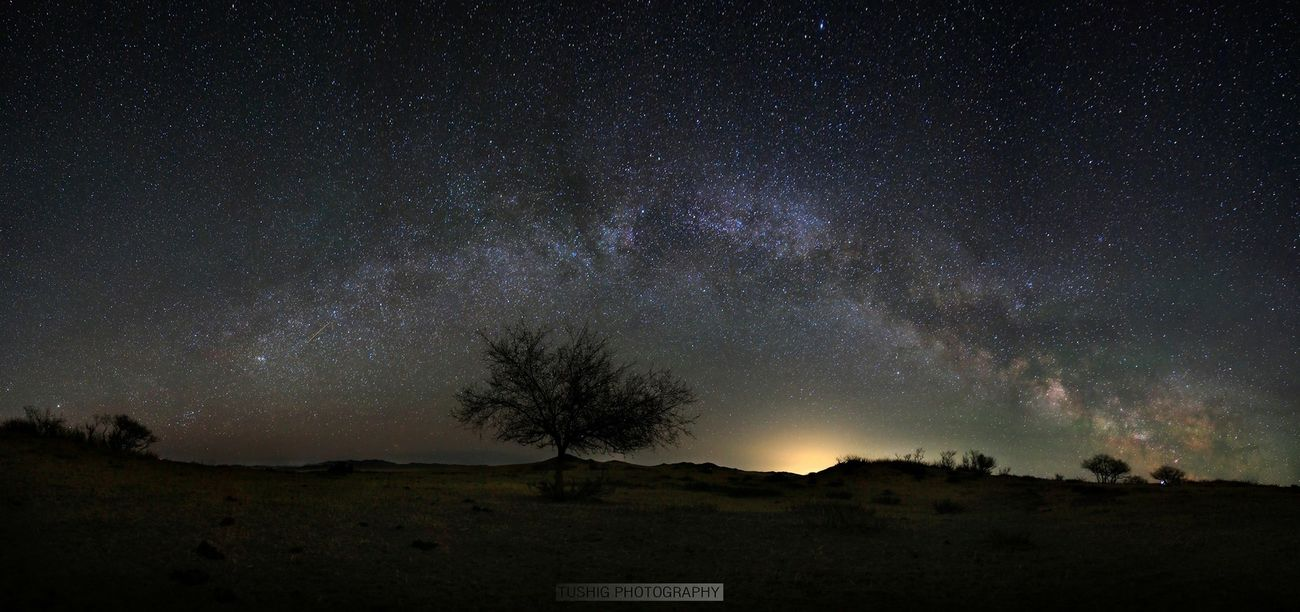 Milkyway Milky Way Astrophotography Tree Sand Nightphotography Landscape Landscape_photography Landscapes Mongolia