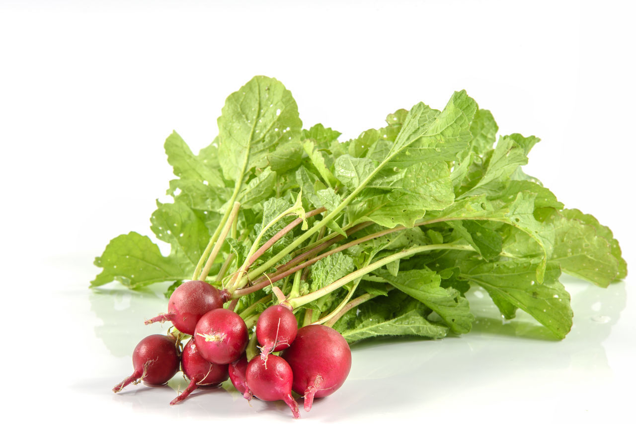 Ecological garden radish. Fresh bunch of radishes from organic production without fertilizers Antioxidant Brakfast Bunch Diet & Fitness Food Freshness Healthy Eating Healthy Food Home Garden Isolated White Background Leaf Nature Nutrition Organic Food Plant Radish Studio Shoot Studio Shot Vegan Food Vegetarian Food Vitamins Weightloss