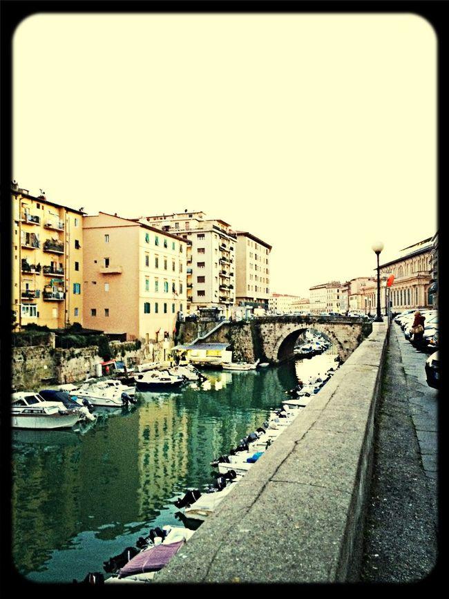 Livorno ©