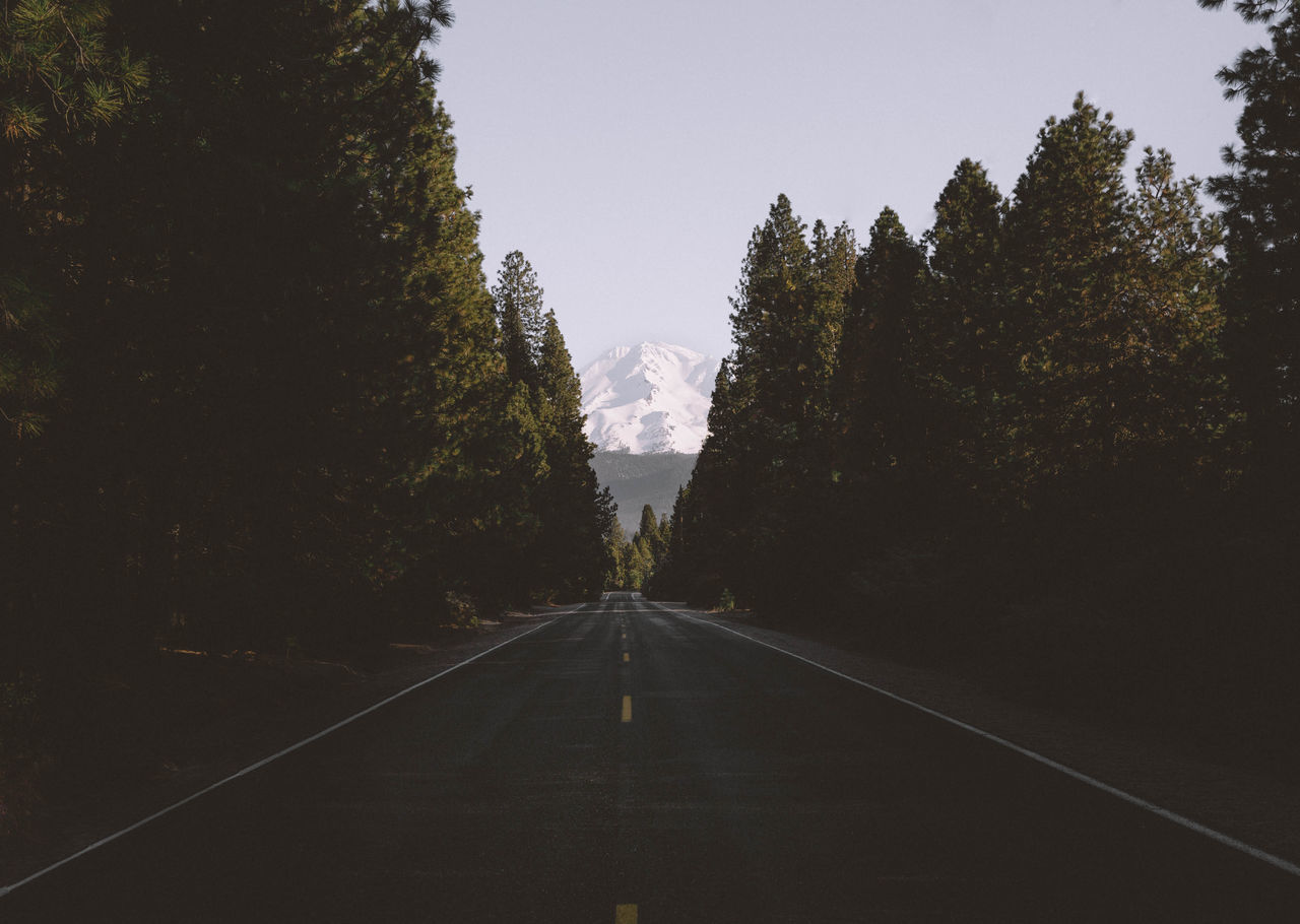 Mt. Shasta California California Love Faded Landscape Moody Mount Shasta Mountain Nature Northwest Pacific Northwest  Pacific Ocean Photography PNW Road Roadtrip Shasta Sky Snow Street Travel Travel Destinations Tree USA USAtrip VSCO First Eyeem Photo