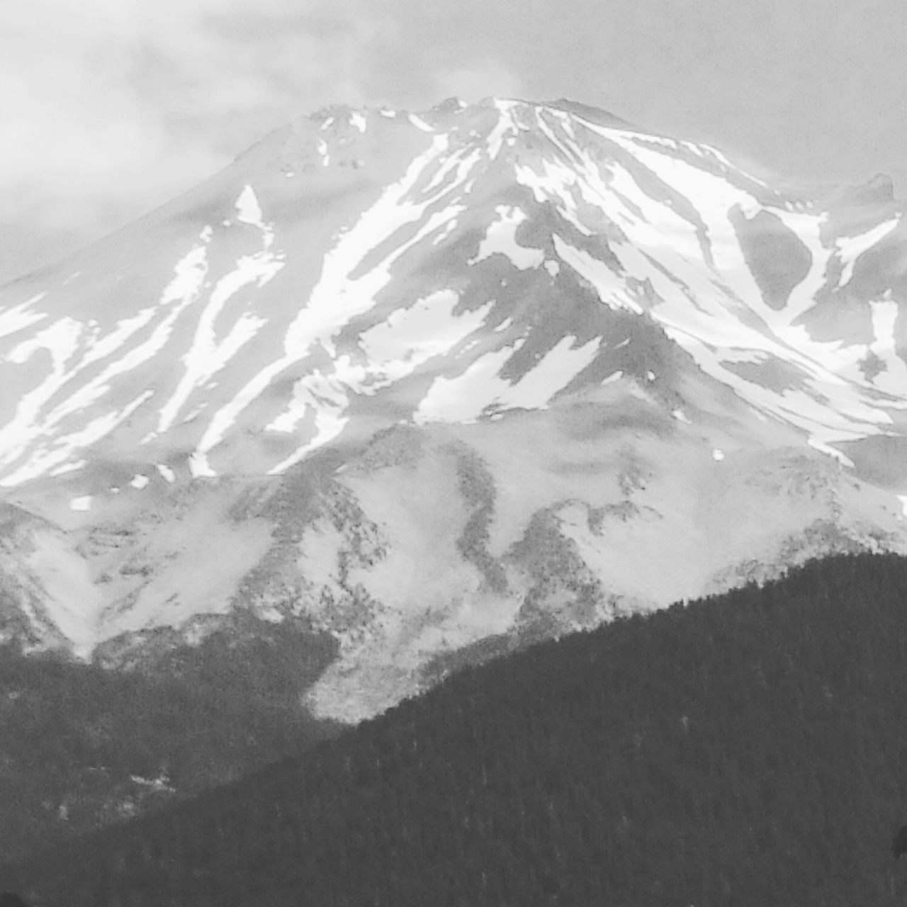 Nature Photography Mountains Mount Shasta, California Black And White