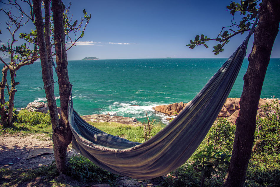 Beach Beauty In Nature Branch Day Horizon Over Water Longtail Boat Moored Nature Nautical Vessel No People Outdoors Outrigger Rope Swing Scenics Sea Sky Tranquil Scene Tranquility Tree Tree Trunk Water The Secret Spaces