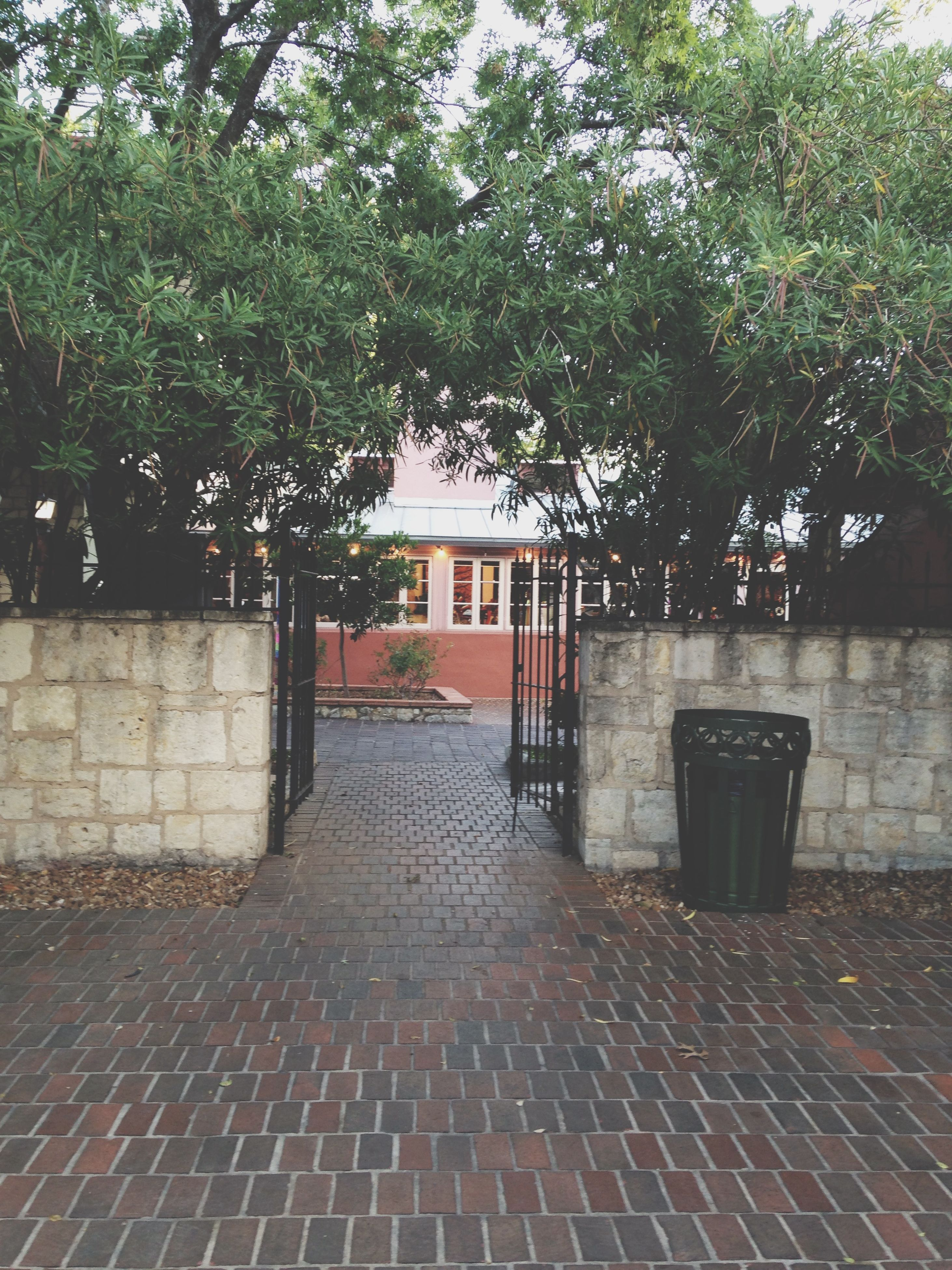 tree, architecture, built structure, building exterior, the way forward, footpath, cobblestone, empty, sidewalk, walkway, house, street, paving stone, growth, absence, day, outdoors, pathway, sunlight, wall - building feature