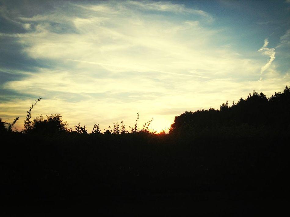 Sunset Helloooo