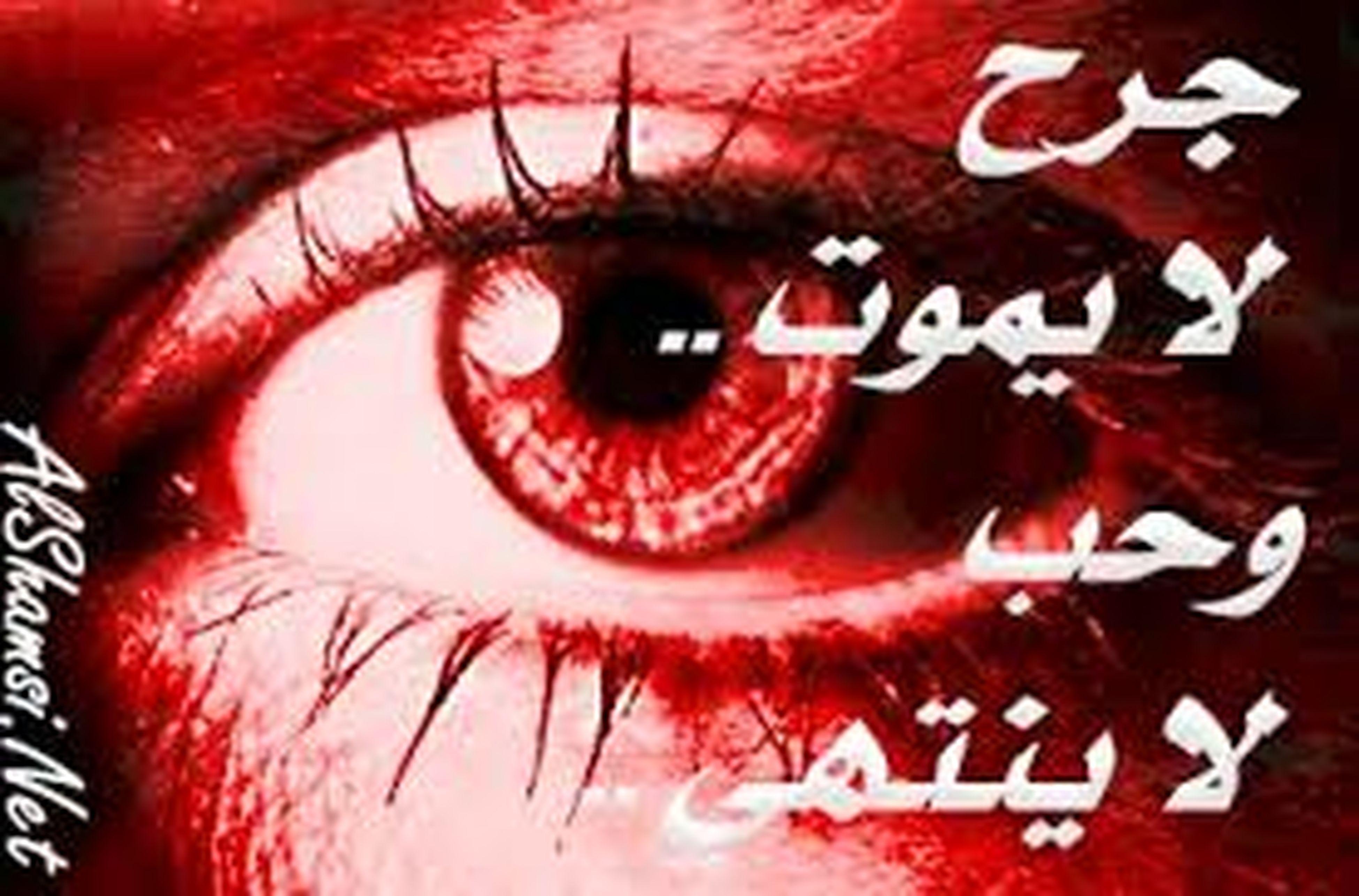 close-up, red, human eye, eyelash, indoors, extreme close-up, full frame, portrait, eyesight, human face, part of, backgrounds, looking at camera, detail, extreme close up, sensory perception, vision