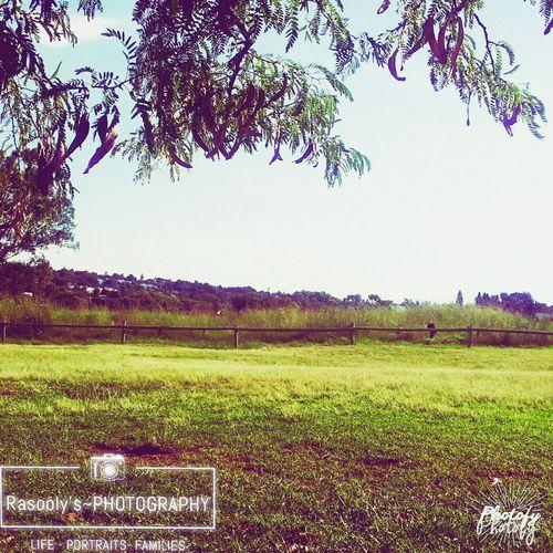 Taking Photos Hanging Out Enjoying Life Nature Photography Sweet Sunday Afternoon First Eyeem Photo