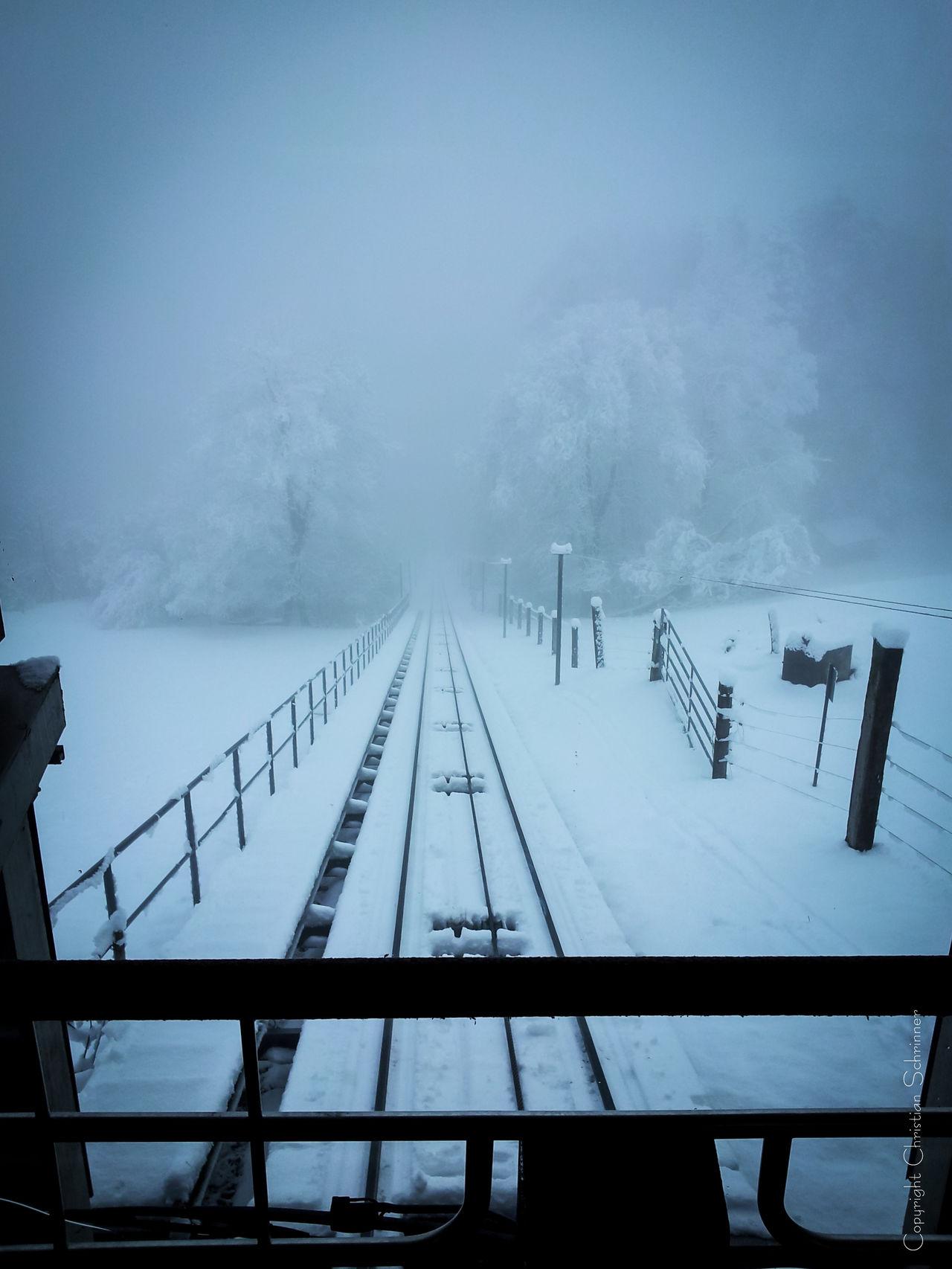 Foggy winter landscape. Winter Landscape Landscape