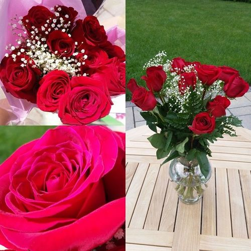 Nofilterneeded I want to say thanks to @z_anderson19 for these beautiful 12redroses for our 8th month. You are such an important person in my life, I am glad we have been together thus far and hope for many more months to come. I miss you, hope to see you soon Ilikeyoulots Minion  Bestfriends Boyfriend