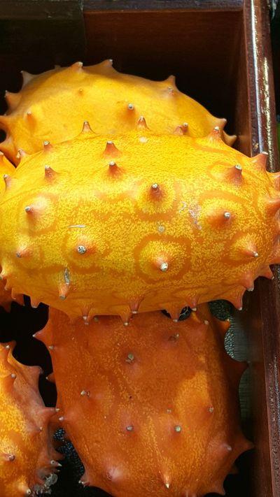 Cactus Pear Spiny Melon Orange Yellow Fruit Produce Box Store Nature Food Bizarre