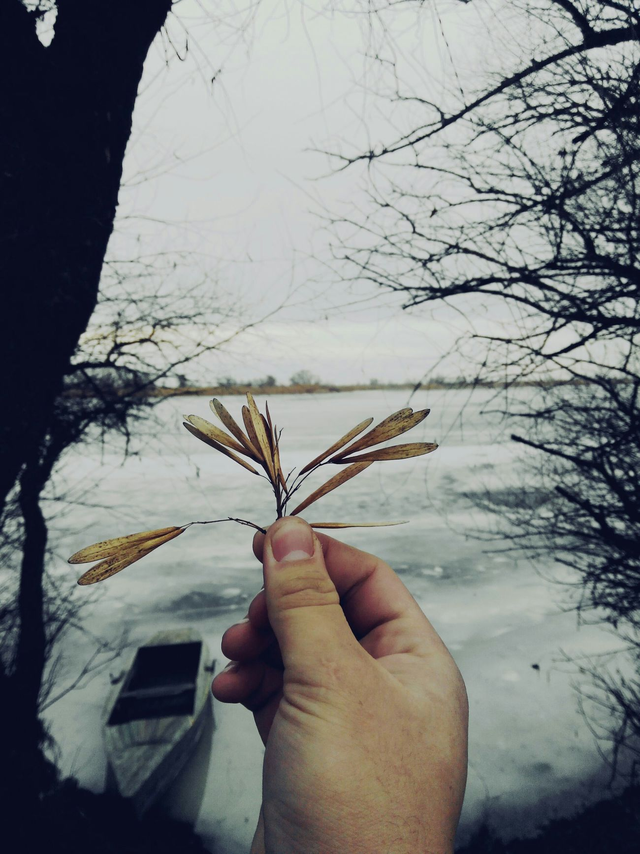 And peace... The Whole World In My Hands Winter Nature Biutiful