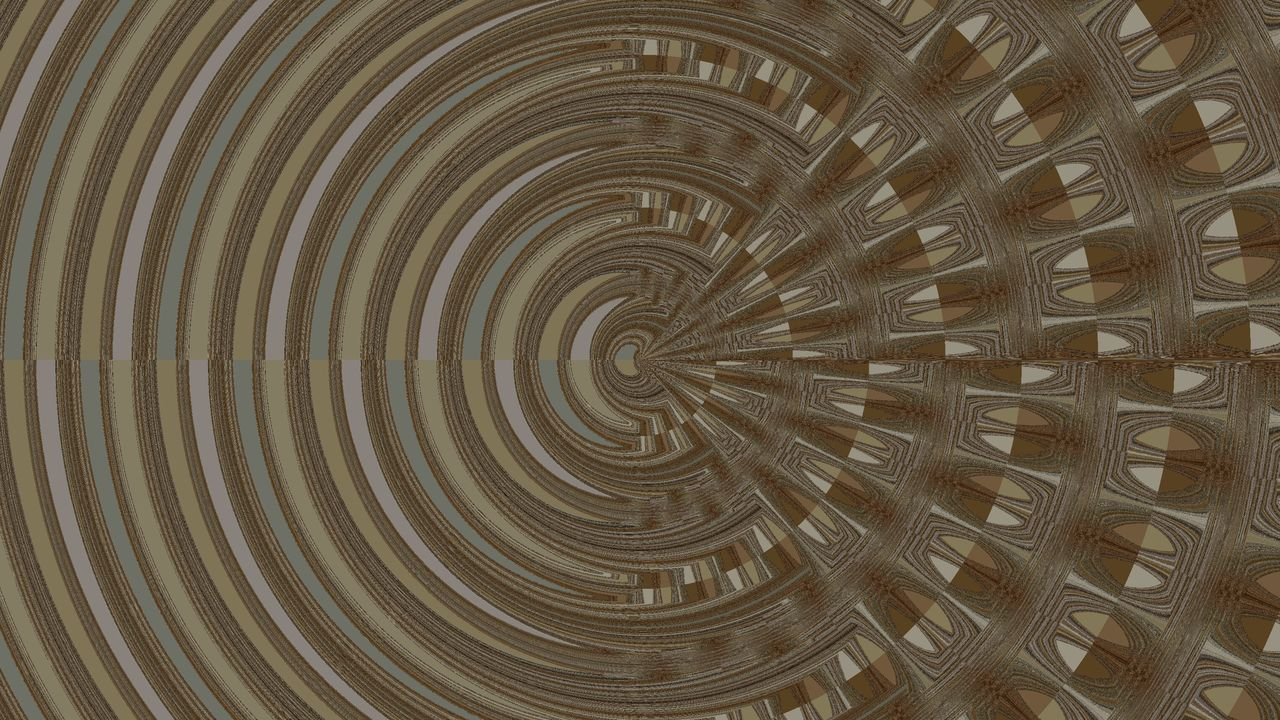 full frame, backgrounds, pattern, textured, no people, concentric, outdoors, tree ring, close-up, day