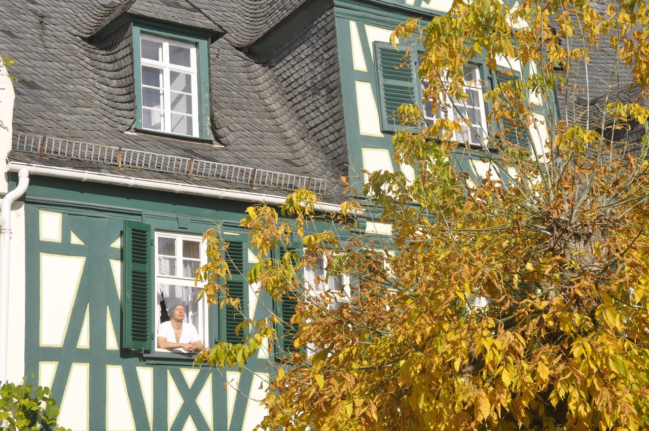 Enjoying the sun Architecture Building Building Exterior Enjoying Nature Enjoying The Sun Europe Frame House Germany Half-timbered Half-timbered House House Relaxing Relaxing Moments Residential Building Residential Structure Rheingau Sun Sunlight Sunshine Tree Window