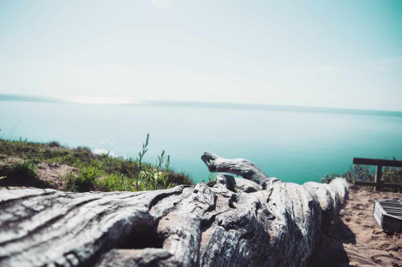 Beautiful stock photos of baer, Beauty In Nature, Clear Sky, Copy Space, Day