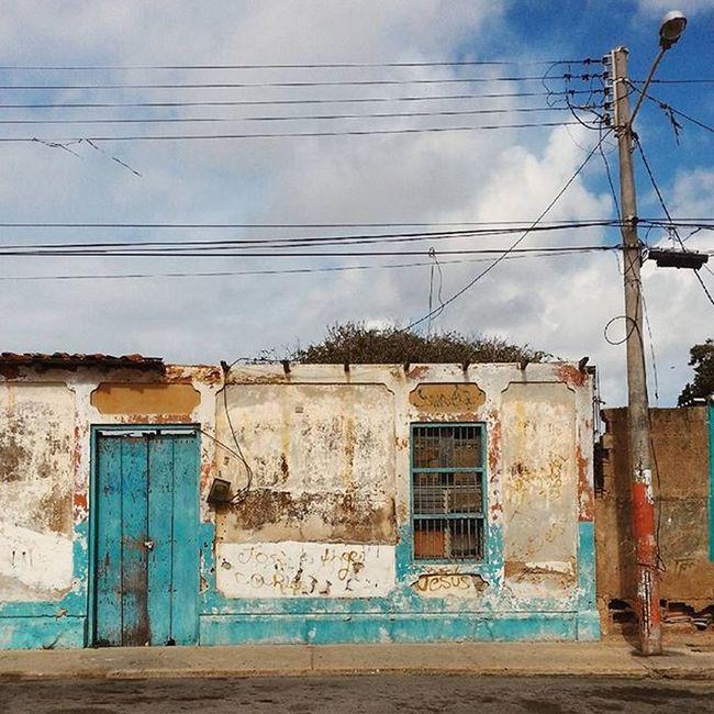 En verde Bocaderio Macanao IslaDeMargarita Vscocam Instagram Vscogrid Communityfirst Primerolacomunidad Hallazgosemanal Photoofheday Instagrames Featuremeinstagood IgersVenezuela Gf_venezuela Instapro_ve Instafoto_ve Mobilephotography Venezuela_captures Ig_islademargarita Elnacionalweb HuntgramVenezuela Like4like Instamood Visionrechazada FotodeldiaSPV