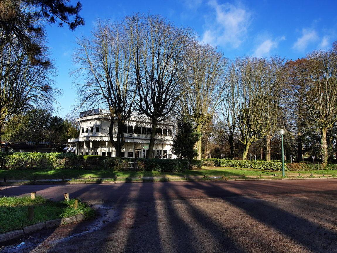 Leading shadows Bois De Vincennes Building Exterior Composition Paris Pavilon Perspective Plateau De Gravelle Shadow Tree Woods