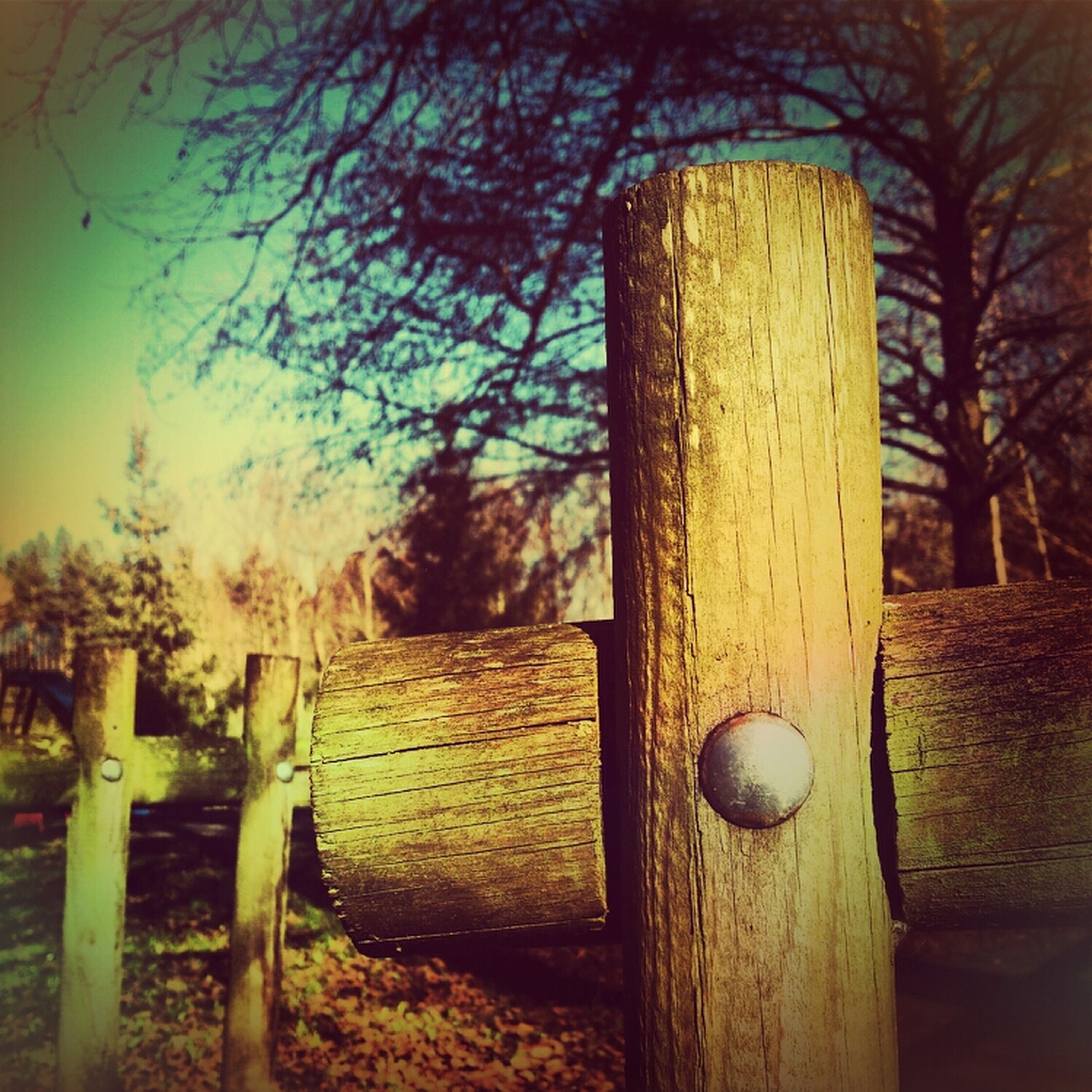 wood - material, tree, wooden, field, wood, no people, close-up, outdoors, tree trunk, growth, day, sunlight, tranquility, grass, nature, fence, focus on foreground, old, park - man made space, still life