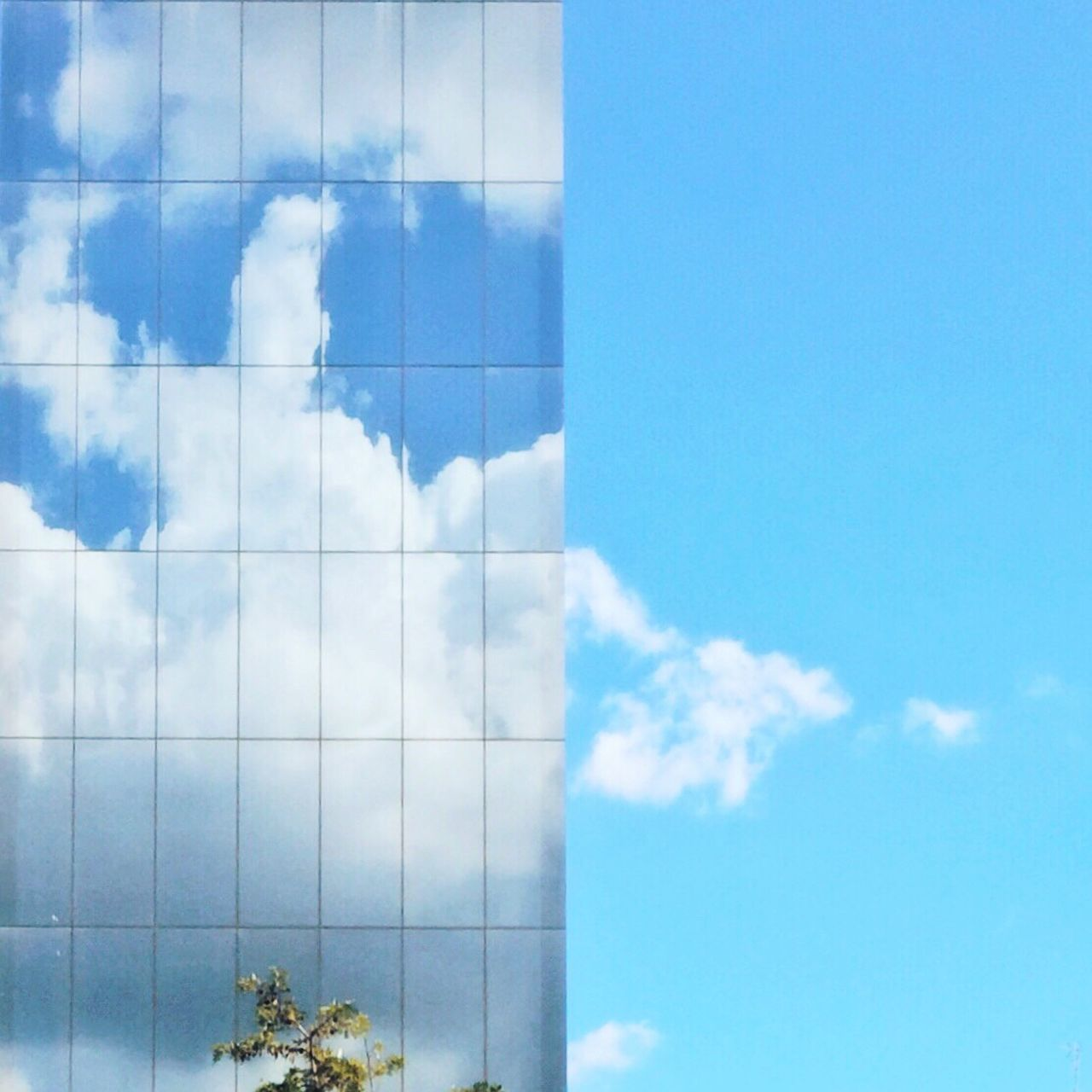Sky Cloud - Sky Blue Low Angle View Day No People Architecture Outdoors Built Structure Nature Building Exterior Beauty In Nature Office Block