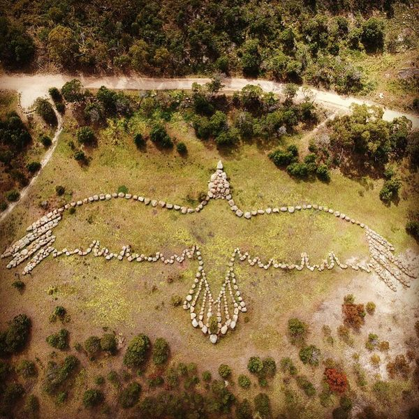 Outdoors High Angle View Eagle Geoglyph Nature Ancient