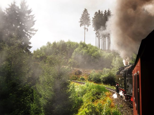 Can you Smell the Smoke of this Steam Train on a Mountain Ride ? Steamtrain Harz Germany Brockenbahn Brocken Global Photographers Alliance Global Photographer Works Exhibition Showcase July Summer Summertime Traveling Travel Railway Railway Track Railroad Railroad Track Landscape Landscape_Collection