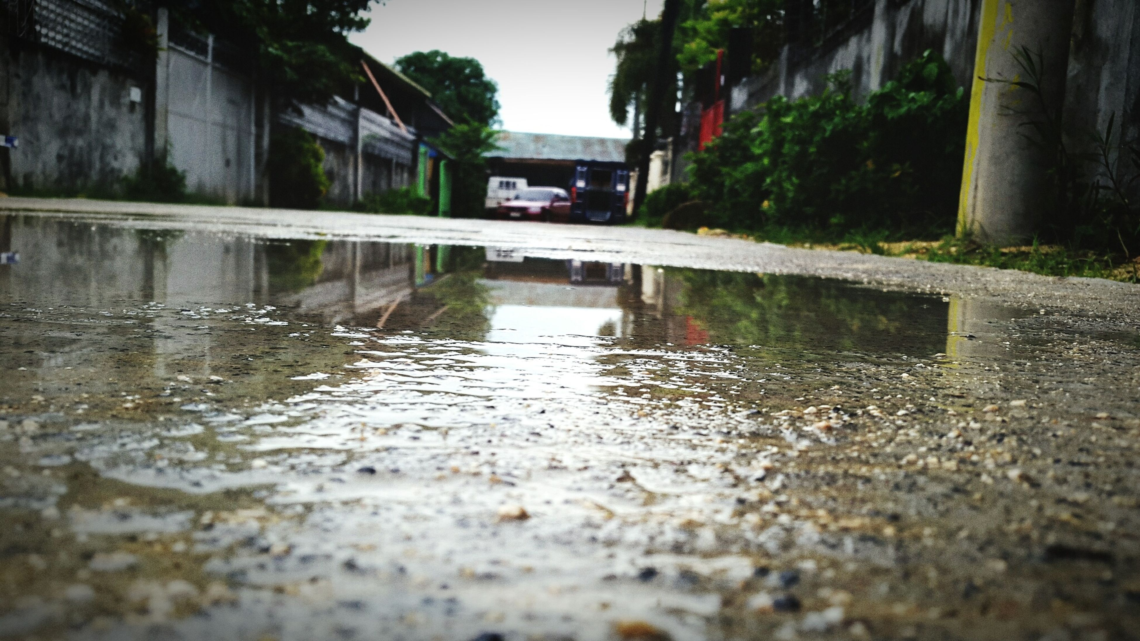 water, reflection, puddle, built structure, wet, outdoors, rainy season, rain, day, building exterior, nature, architecture, rainfall, no people, tree, sky