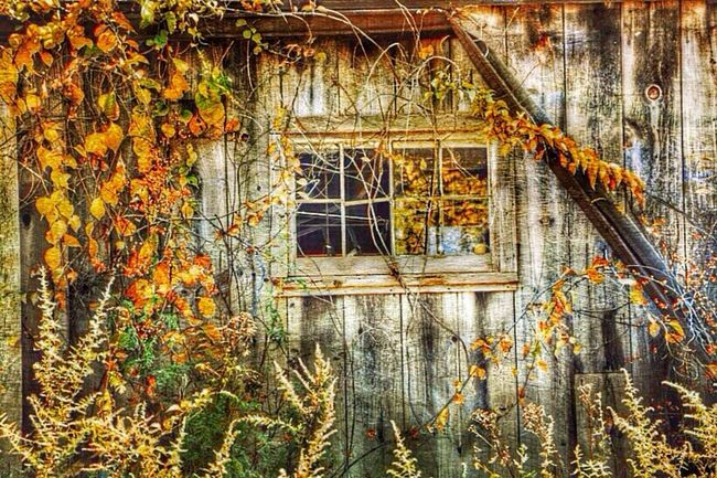 Hdr_Collection EyeEmBestEdits Abandoned Grimewindow