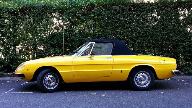 Alfa Romeo Collection Car London Yellow Walking London