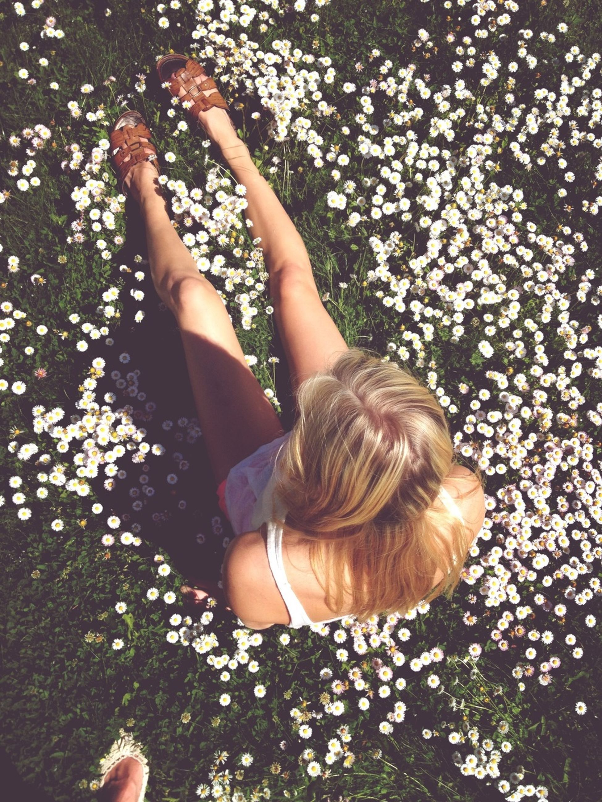 lifestyles, leisure activity, young women, person, long hair, young adult, high angle view, casual clothing, grass, girls, relaxation, flower, day, park - man made space, sitting, outdoors, nature