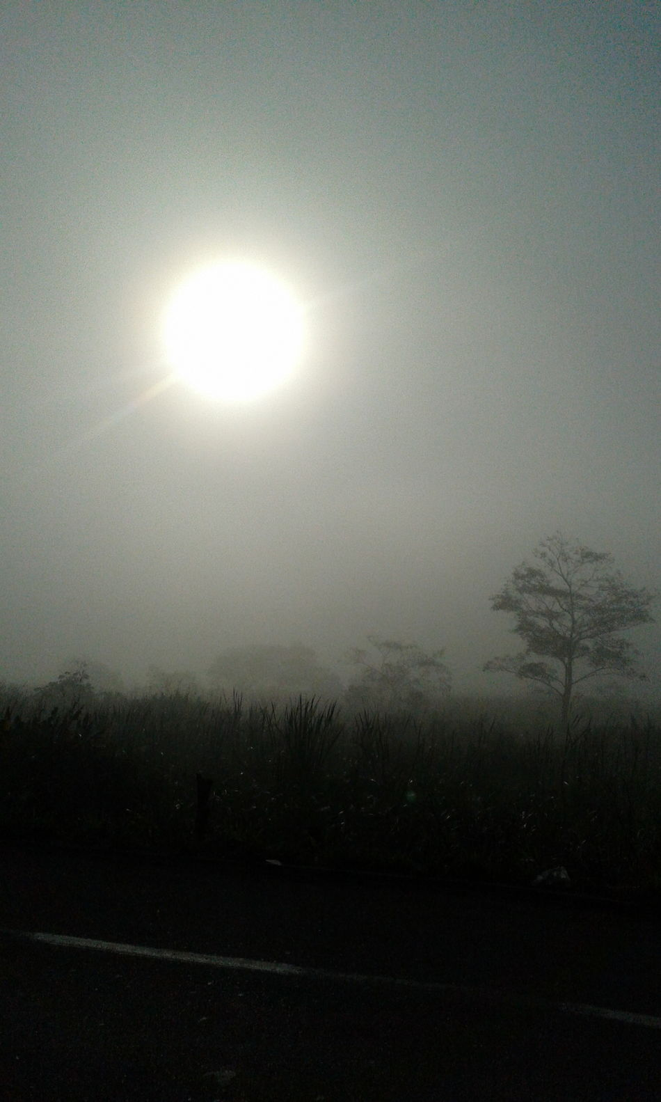 Nature Sky Rain Outdoors Silhouette Sun Tranquil Scene Scenics Beauty In Nature No People Moon Day Neblina