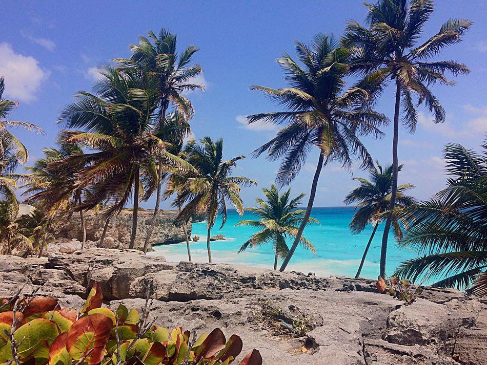 Beautiful stock photos of piraten, Barbados, Bathsheba, Blue, Calm