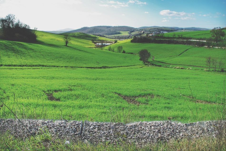 Landscape Landscapes With WhiteWall Italy Layers Green Greenfields Hills Hillside Pond Road Early_spring Landscape Layers Tuscany Gabion