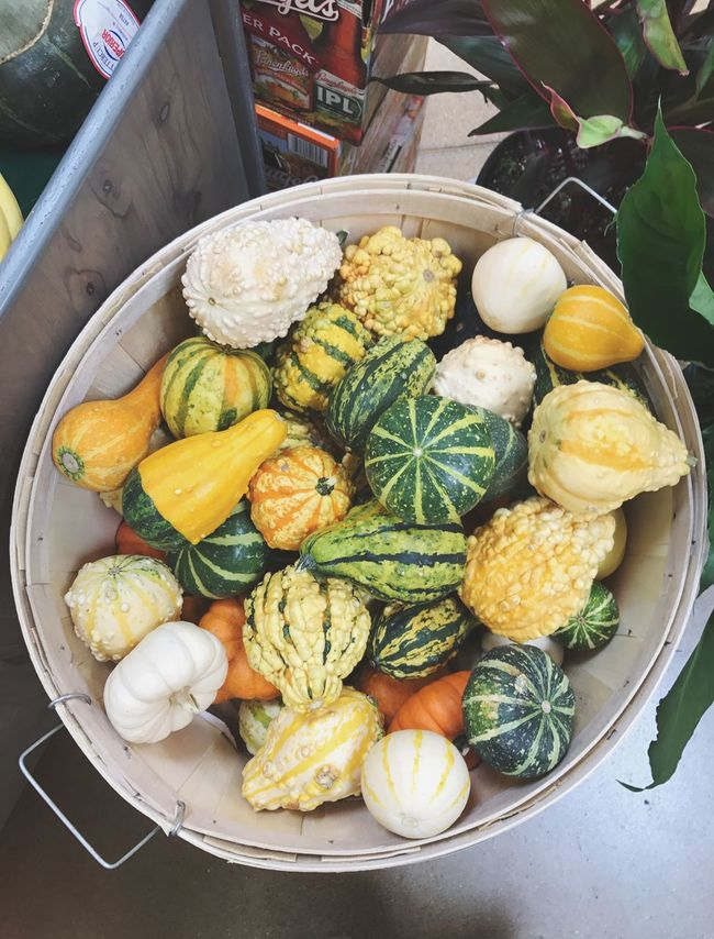 Food Gourds Large Group Of Objects High Angle View Healthy Eating Assortment Colorful Healthy Lifestyle Freshness Fall