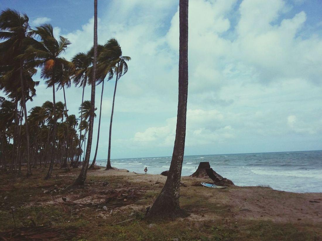 Beach Horizon Over Water