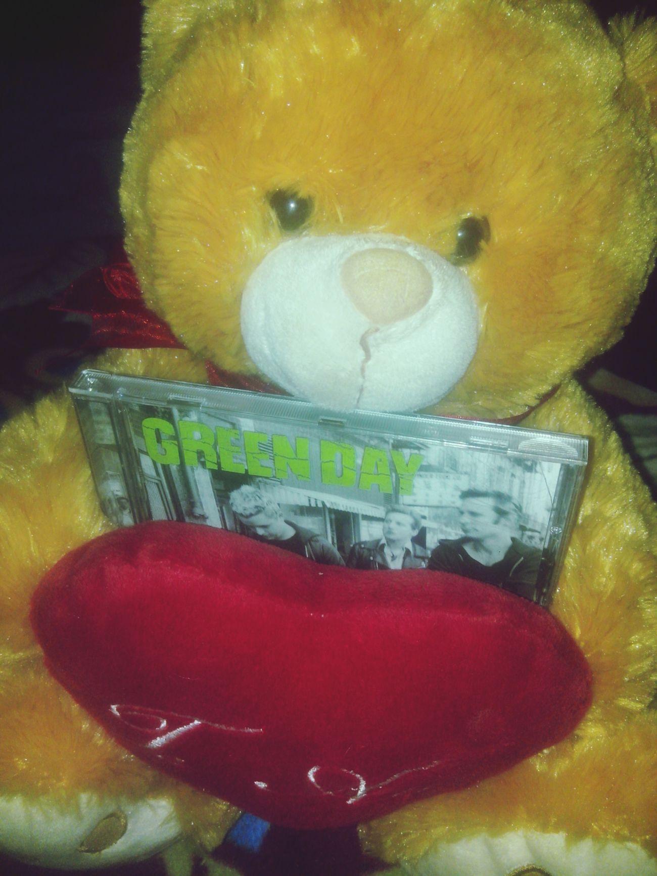 Mi osito con unos de mis cds favoritos<3 Green Day Iloveyou Warning Billiejoearmstrong